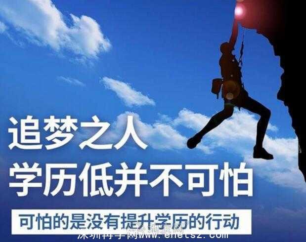 2020年报读深圳网络教育有用吗