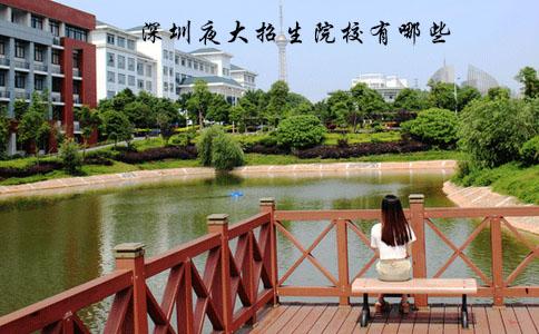 深圳夜大有哪些学校