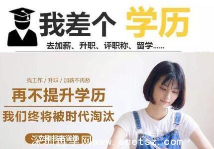 深圳网络教育