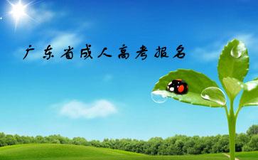 广东省成人高考报名