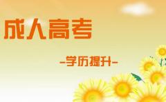 广西壮族自治区2020年成人
