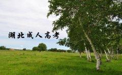 湖北省2020年成人高考报名